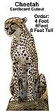 Cheetah Cardboard Cutout Standup Prop