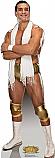 Alberto Del Rio - WWE Cardboard Cutout Standup Prop